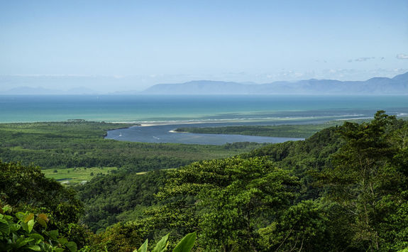 Aerial view of Daintree Forest