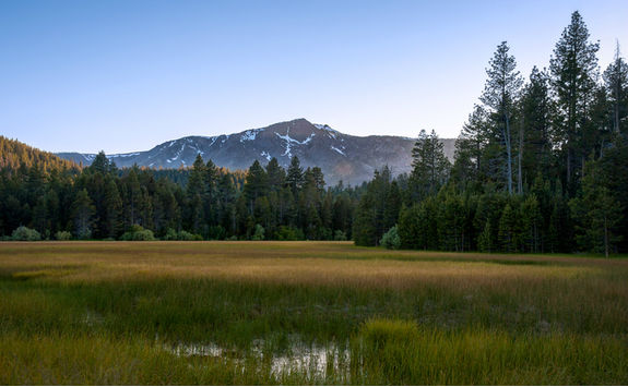 Agricultural field in Lake Tahoe