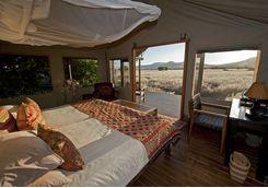 desert rhino camp interior