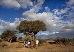 kulala walking safari