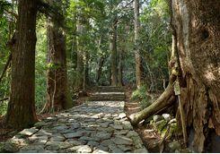 Kumano Kodo trail