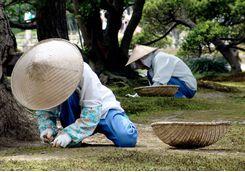 kenrokuen garden gardeners