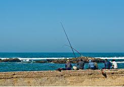 Fishing in Essaouira