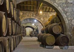 Porto barrels in a cellar