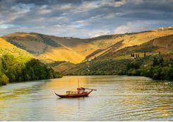 Boat cruising along the river Douro