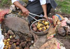 Traditional potato cooking