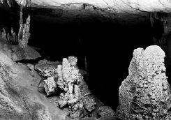 Bats in Mandresy Cave