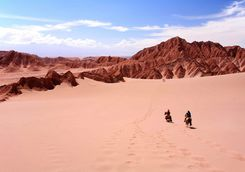 Horse riding in the Atacama