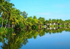 Hoi An jungle river reflection