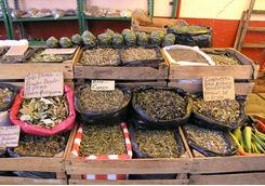 Mexican herbs market in San Miguel del Allende