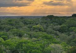 Sunset in KwaZulu Natal