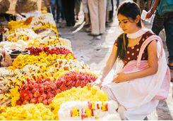 Jaipur flower market