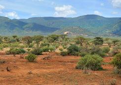 Laikipia plateau landscape