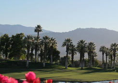 Palm Springs Golf Course