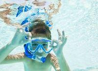 Bot Snorkelling