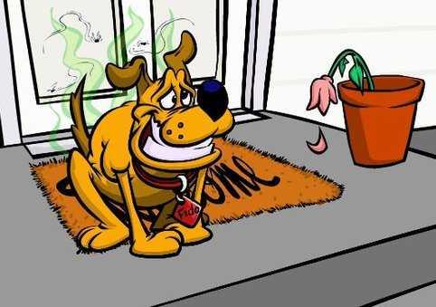Buk Lau Dog Poop
