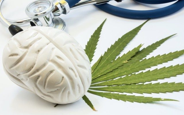 cbd for TBI