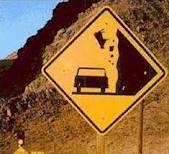 cow into car