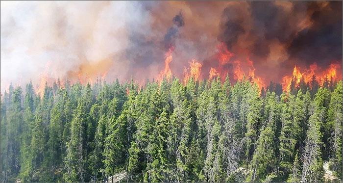 Presque tout le Québec en niveau d'alerte extrême ça brûle !