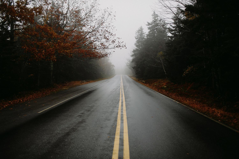 acadia-national-park-fog