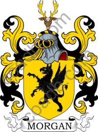 Morgan Family Crest, Coat of Arms and Name History