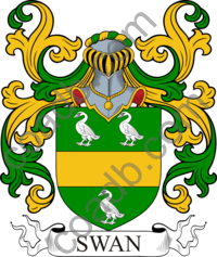 Swan Family Crest, Coat of Arms and Name History