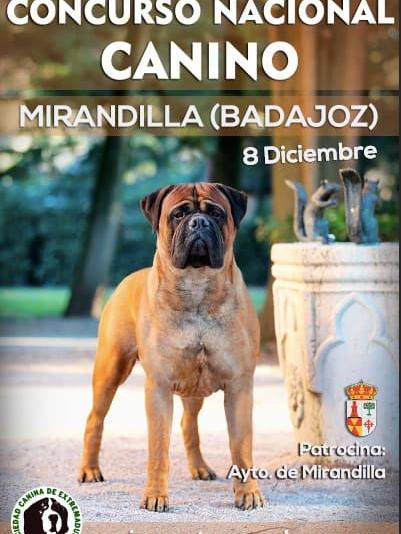 Concurso Nacional Canino Mirandilla