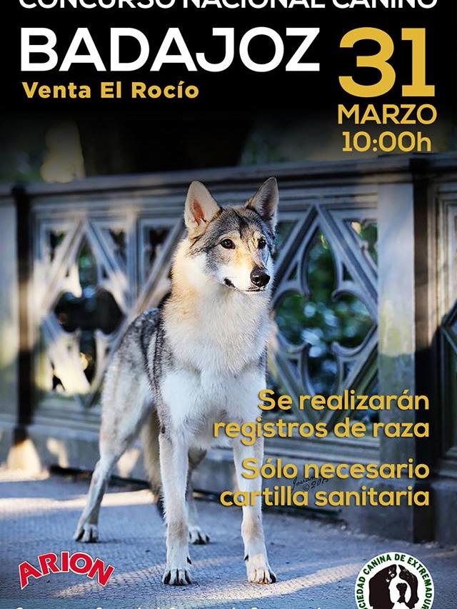 Concurso Nacional Canino Venta el Rocio, Badajoz