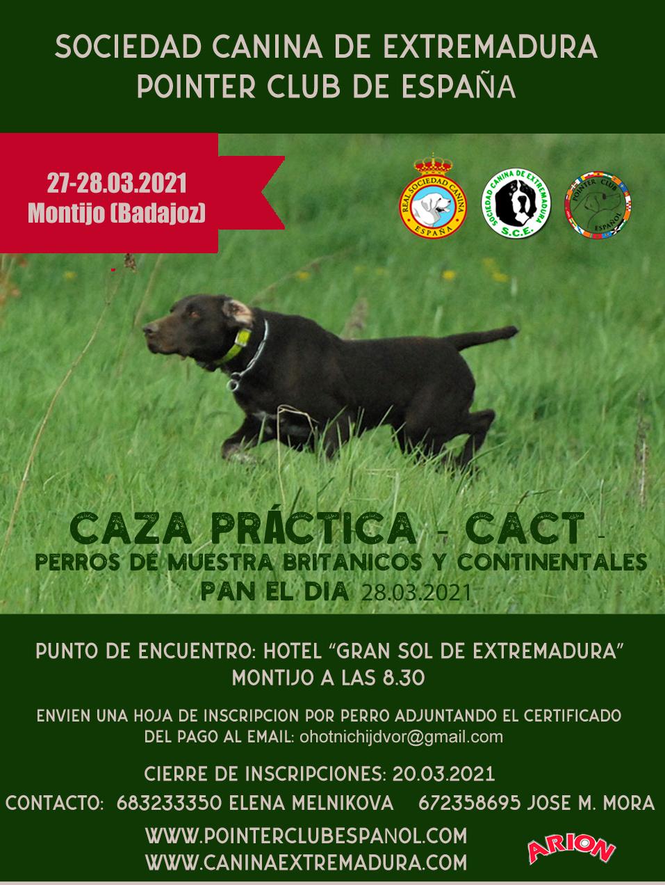Prueba de caza Practica CACT para perros de muestra britanicos y continentales