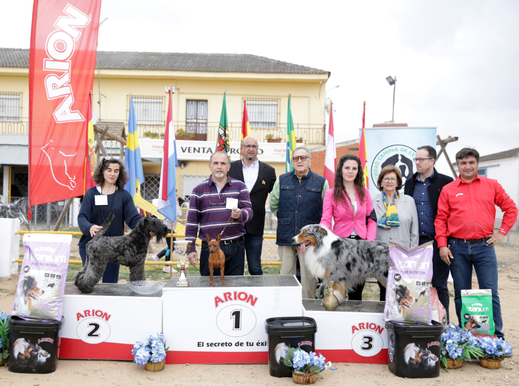 BIS Concurso Canino Nacional