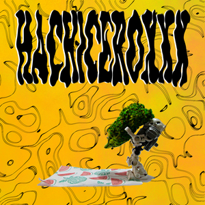 Card portada 4