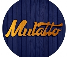 Card logo mulatto