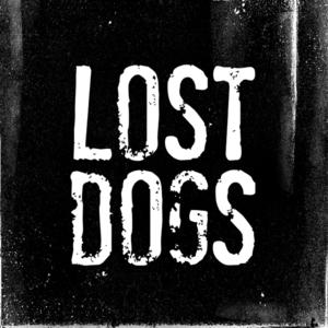 Card foto de perfil facebook   lost dogs