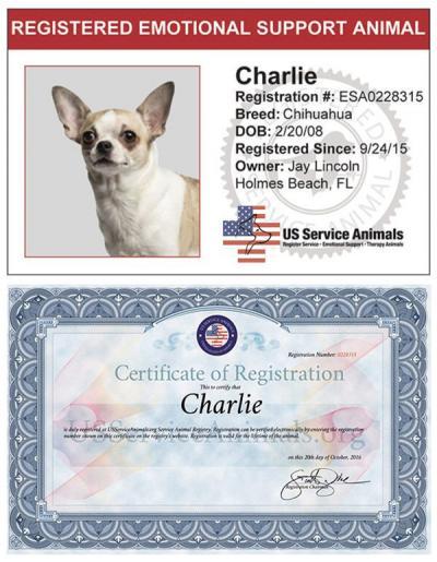 Emotional Support Animal - Registration