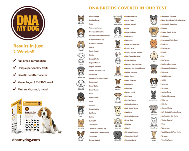 DNA My Dog - Breed Identification Test Kit