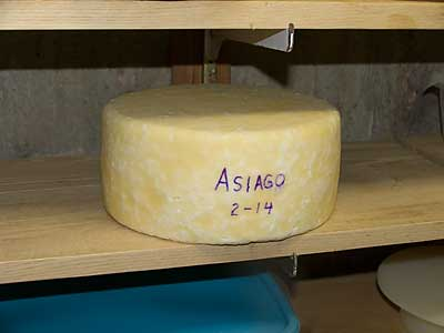 Asiago Cheese Recipe