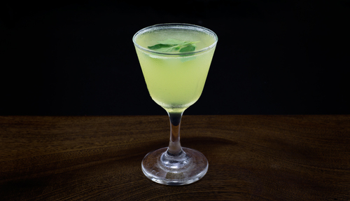 yellow chartreuse cocktail photo