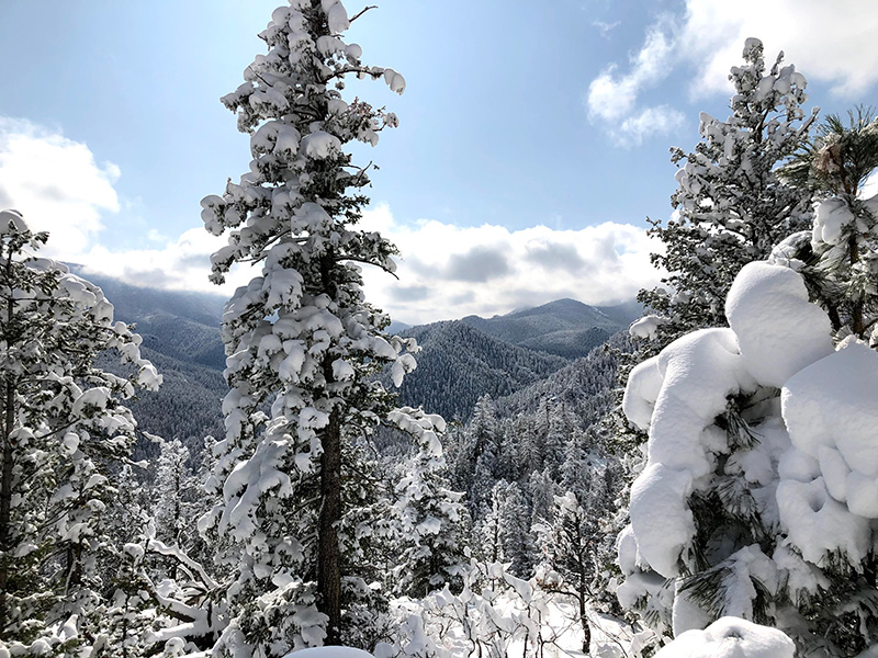From the Mt. Muscoco Trail, Colorado Springs, Colorado