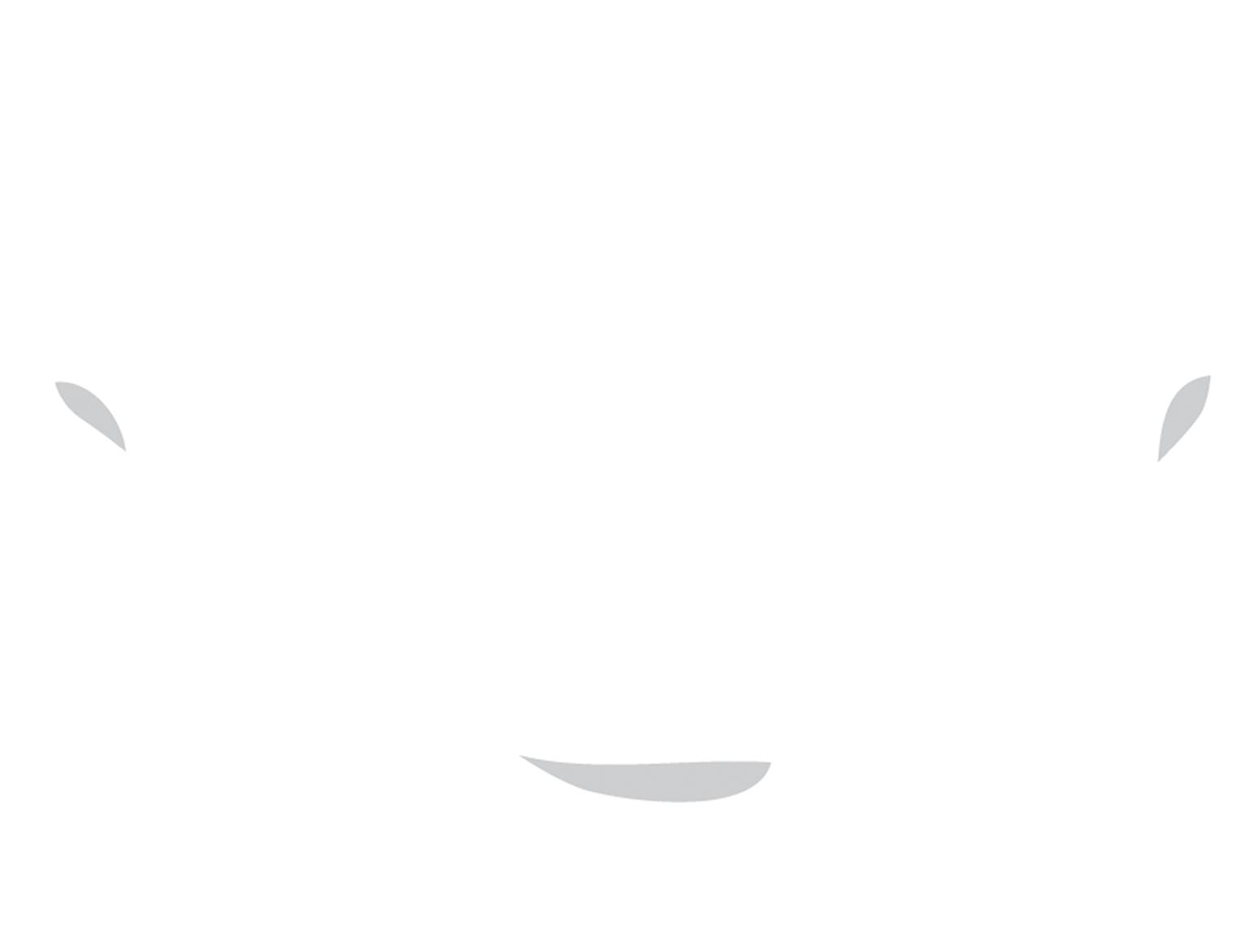 Nanomonx Logo