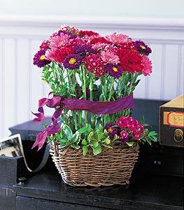 Basket of Smiles Floral Arrangement