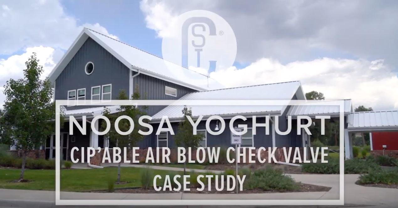 Noosa Yoghurt Case Study Video Version
