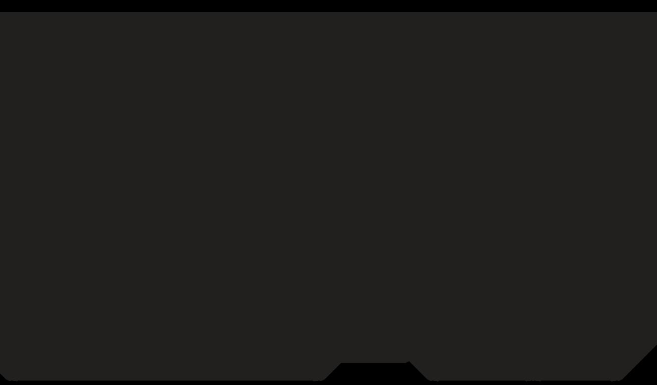 LeviMag WP81 Dimensional Drawing