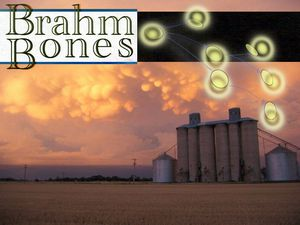 Brahm Bones