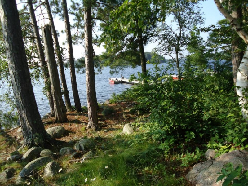 Big Lake Wilderness Lodge: Call of the Loon-FREE PONTOON