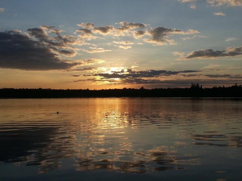 Moose Lake Resort: Northwoods