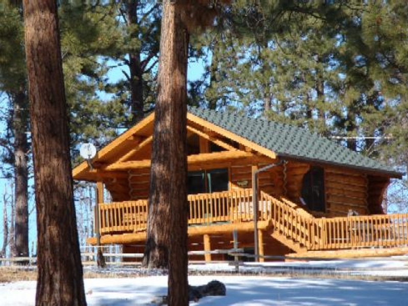 A Lil Bit of Heaven: Lu Pine Log Cabin
