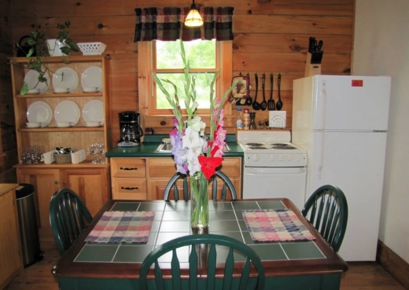 Mill Creek Cabins: Basswood