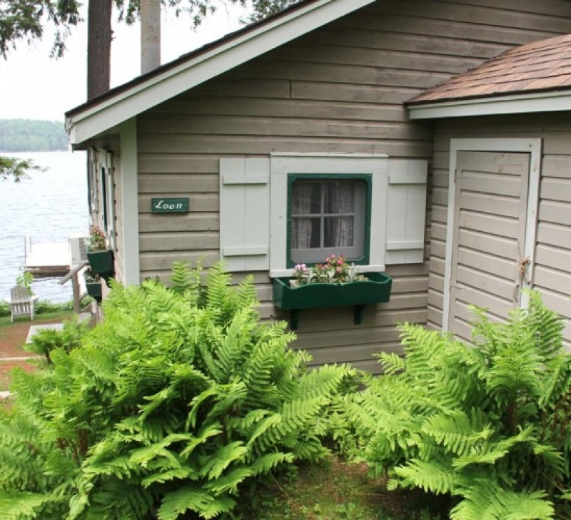 Loon Cabin - INACTIVE