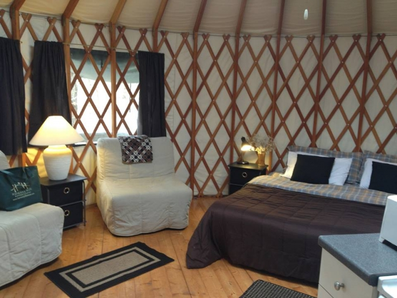 Harmony Hill Retreat: Tree House Yurts