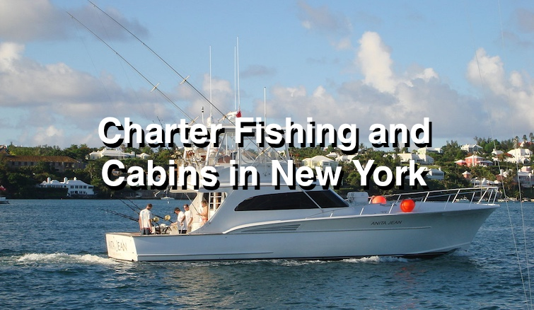 Compare cabins and charter fishing in New York :)